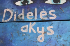 VSI-Dideles-akys_Kruminiu-km_ESFA-191